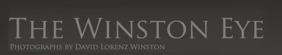 THE WINSTON EYE