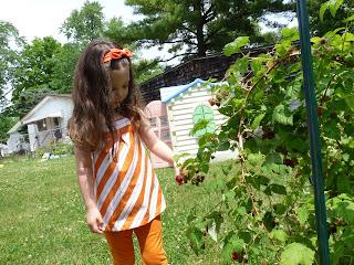 zoe's lunchbox picking raspberries
