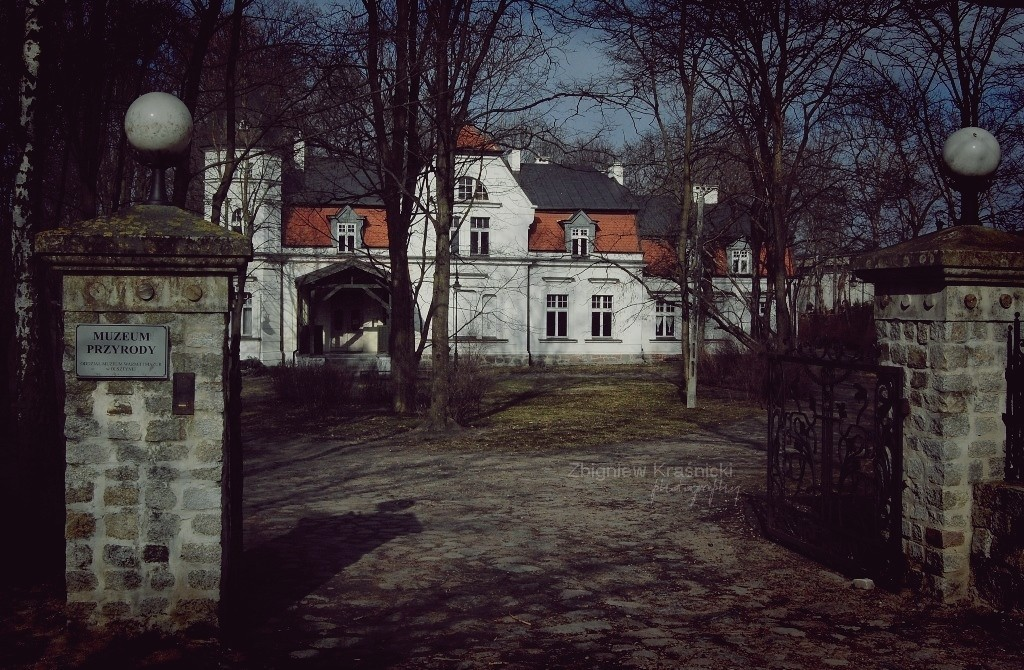 Olsztyn. Muzeum Przyrody i dawna wozownia, czyli Dwór Bergenthal