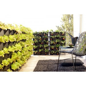 le mur v g tal le potager du balcon conseils maison. Black Bedroom Furniture Sets. Home Design Ideas