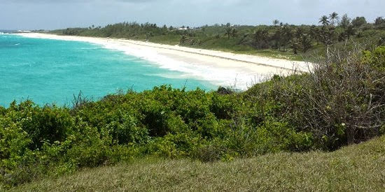 32 acres of land for sale in Long Beach, Barbados - ideal for airport hotel development