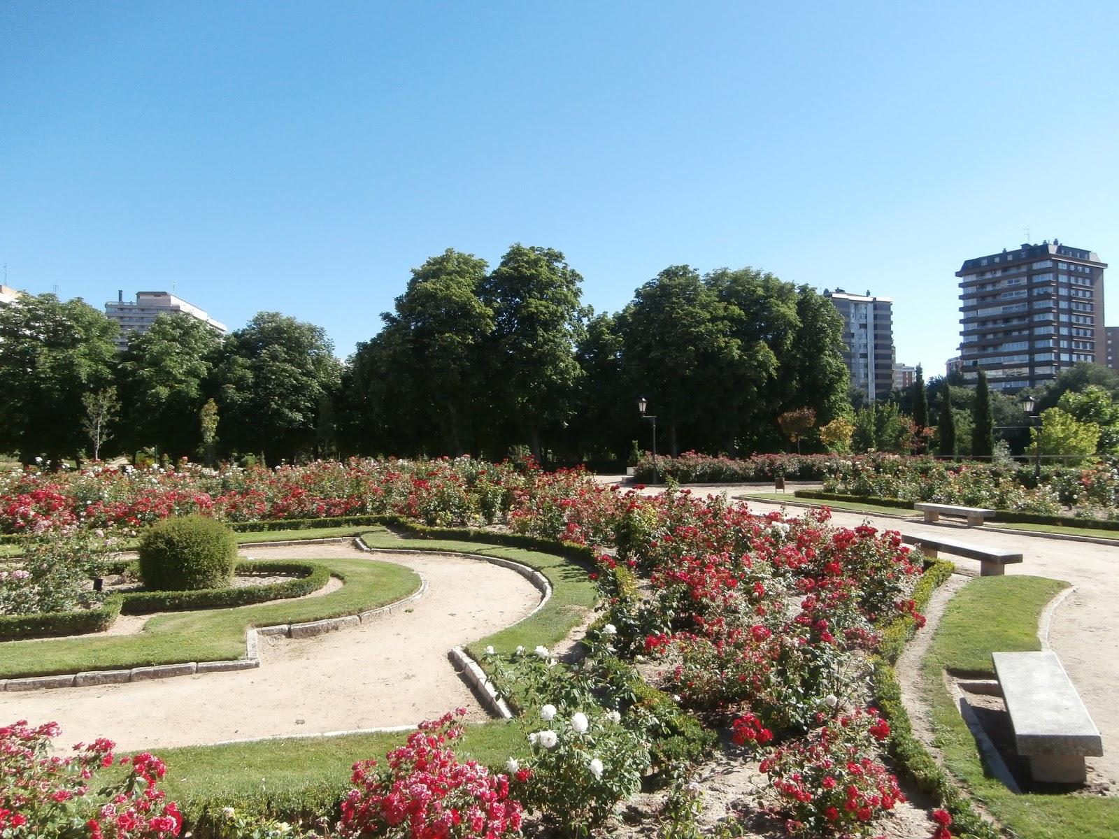 Metido en jardines rosaleda de valladolid for Jardines zen valladolid