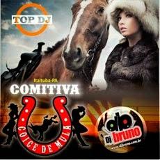 Download CD Comitiva Coice de Mula (2014)