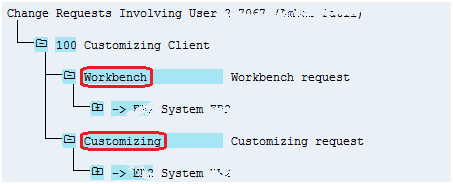 Workbench vs Customizing work request