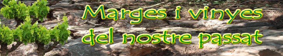 MARGES I VINYES DEL NOSTRE PASSAT