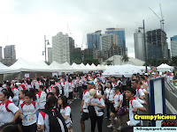 earth run 2011