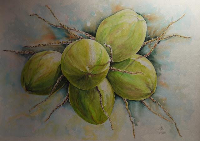 Aquarelles et dessins sur le blog de nelly bertails noix - Dessin noix de coco ...