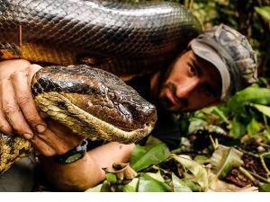 VIDEO HEBOH PAUL ROSOLIE  DITELAN ANACONDA BESAR Kebohongan di Balik Aksi Ditelan Anaconda Terungkap