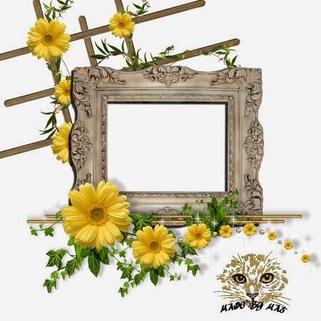 http://2.bp.blogspot.com/-VQ6IPOX-GW4/U34Yv-vJuqI/AAAAAAAADJw/g22b-zFuPkU/s1600/MS+WK2+Cluster+frame+2+tn.jpg