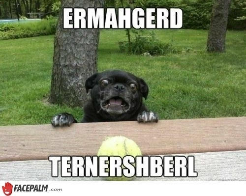 ternershberl jo blogs yet i still don't know how to say 'meme' out loud
