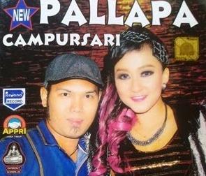 New Pallapa Campursari Vol 13 Full Album