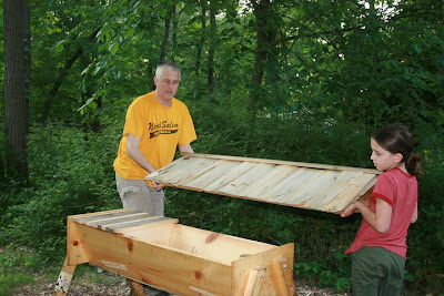 building top bar hive