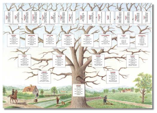 Chroniques de bretagne janvier 2012 - Fabriquer un arbre genealogique original ...