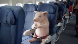 Who is that actor, actress in that TV commercial?: GEICO ...