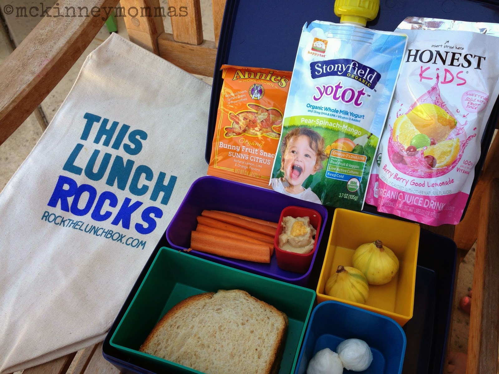 Honest Kids, Stonyfield Yogurt Pouch, Figs, rockthelunchbox.com