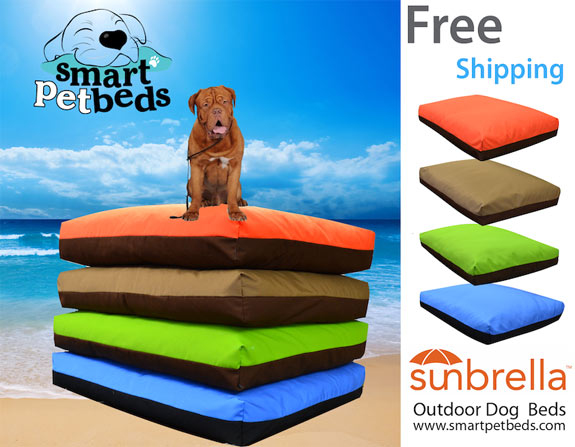 Free Shipping - New Canvas Colors