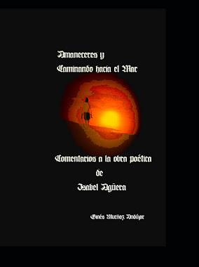 AMANECERES Y CAMINANDO HACIA EL MAR