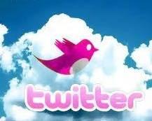 Twitter cor de rosa.