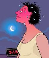 hormonas para la menopausia -  tratamientos naturales para  la menopausia