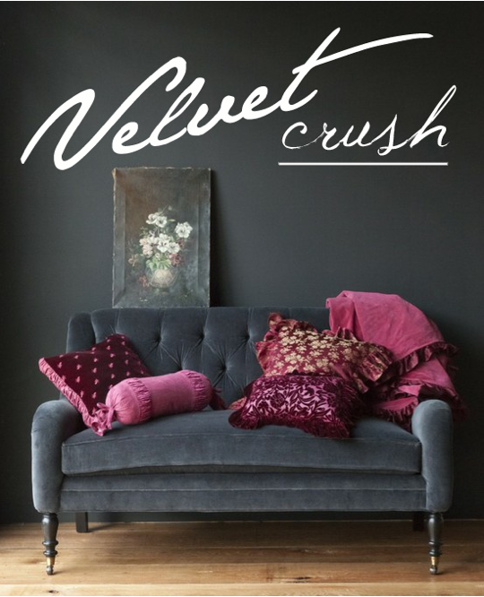 gray walls velvet chair, erin ever after