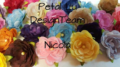 PAST PETAL LU DESIGN TEAM MEMBER