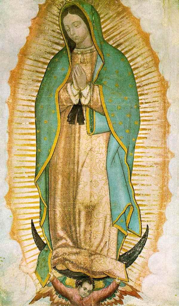 La Virgen De Guadalupe Juan Diego | apexwallpapers.com