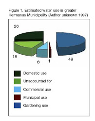 Hermanus Water Use