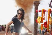 Nisha Kothari latest photos gallery-thumbnail-5