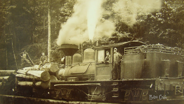 Retro Gran | Logging train circa 1930s