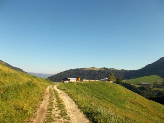Sentiero che porta da Malga Pianeti verso Miniere terre verdi