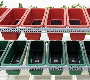 Giàn sắt trồng rau sạch tại nhà