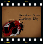 The Brenda's Photo Challenge