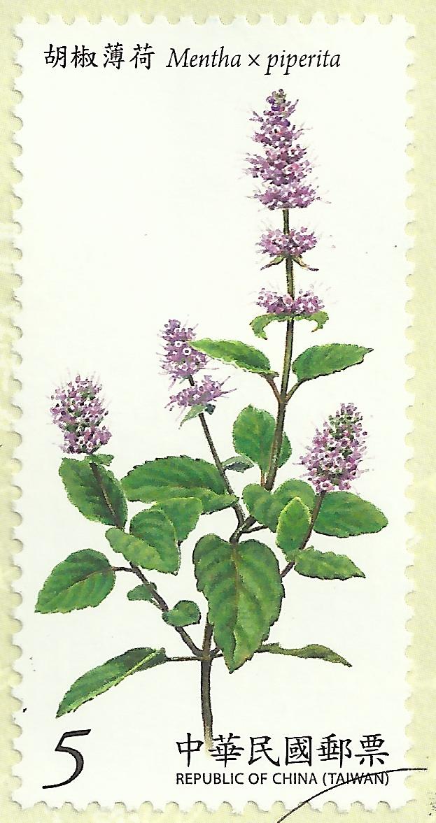 plant q Massy