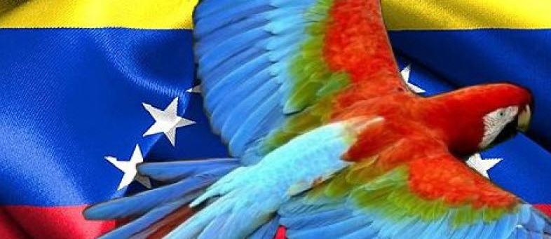 Venezuela: Recursos Genealógicos