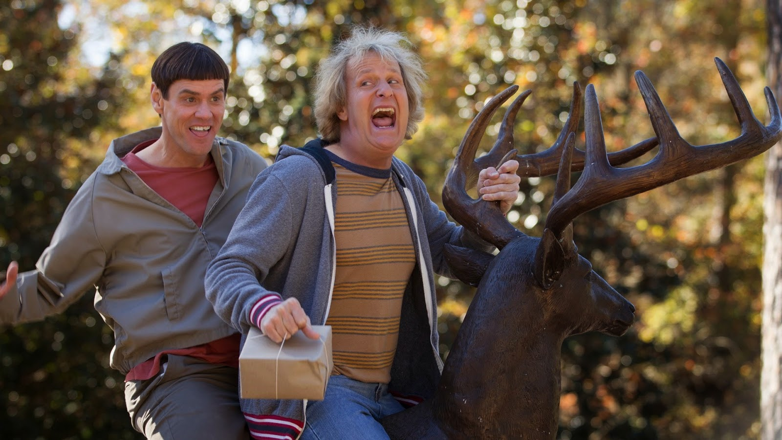 """dumb dumber movie review """"dumb and dumber to"""" is a film of ideas, though that is not intended as a  charitable  the movie brings back lloyd (jim carrey) and harry (jeff daniels),  sets up their  review: the authoritarian populism of """"incredibles 2."""