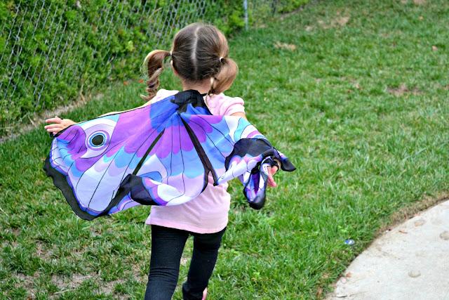 Best fairy wings, dreamy dress ups, best wings for kids, buy dreamy dress ups
