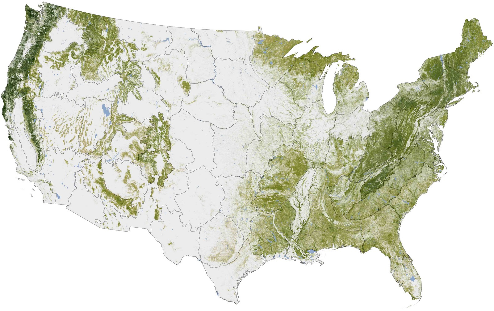 Distribution Of Trees In The United States