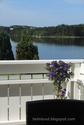 Heimlund: blomster på terrassen