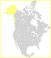 Situación de Alaska en América del Norte