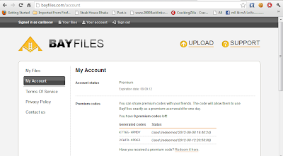 Bayfiles Premium Account 10 september 2012