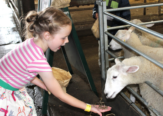 UK Lifestyle Blog - A party at Rand Farm Lincoln