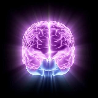 Makanan yang Mencerdaskan Otak Anak