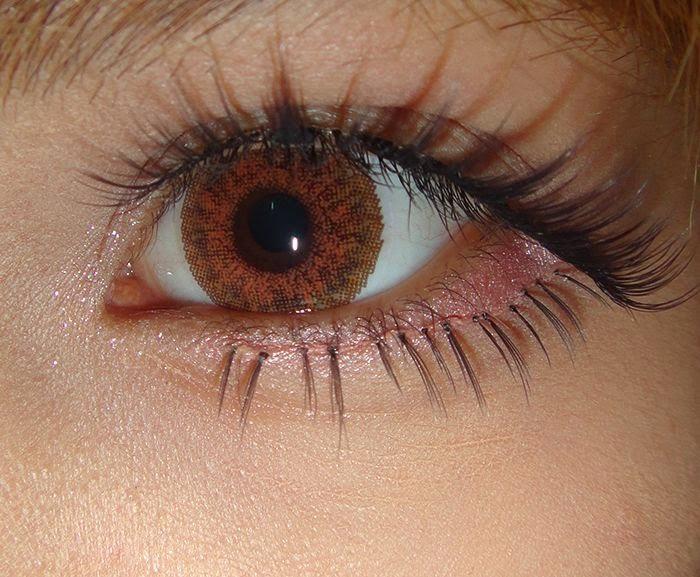 Dolly Eye Gothic 3 Tones Honey : Natural but Kawaii