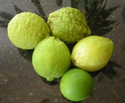 lemons in La Ceiba, Honduras