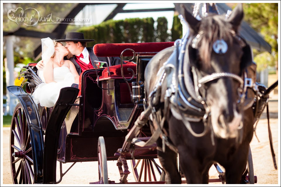 Horse drawn carriage couple's second kiss as man and wife.