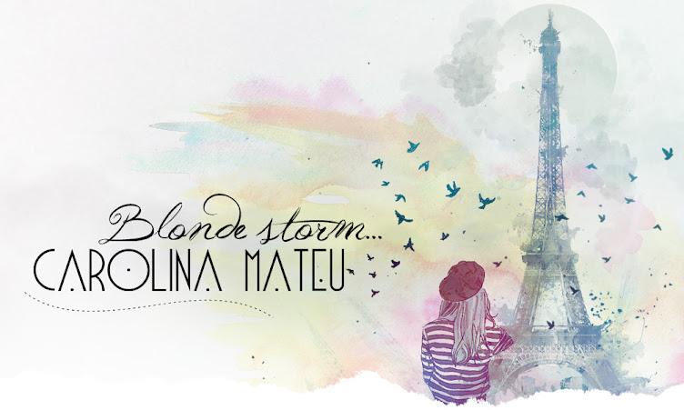 Carolina Mateu Blog