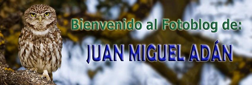 Juan M. Adán