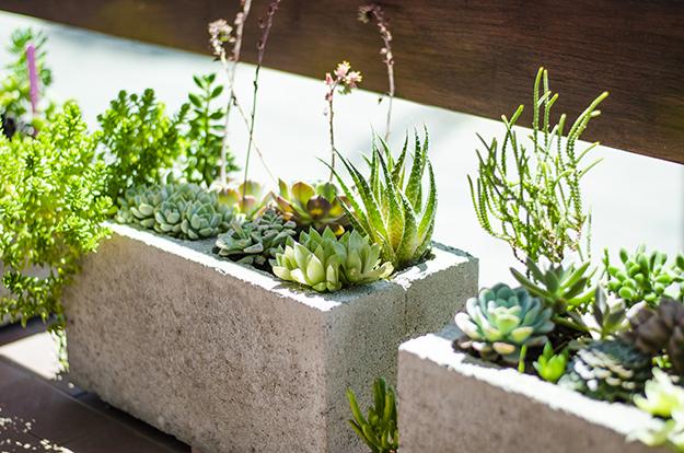Aprende a realizar macetas con bloques de cemento notas for Jardineras con bloques de hormigon