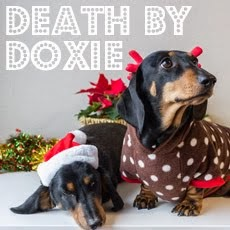 Death by Doxie