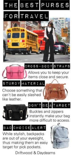 cloe purse - Driftwood & Daydreams: The Best Purses for Travel to Avoid Theft
